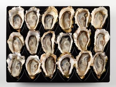oysters half shelled