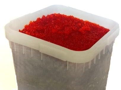 salmon roe in box