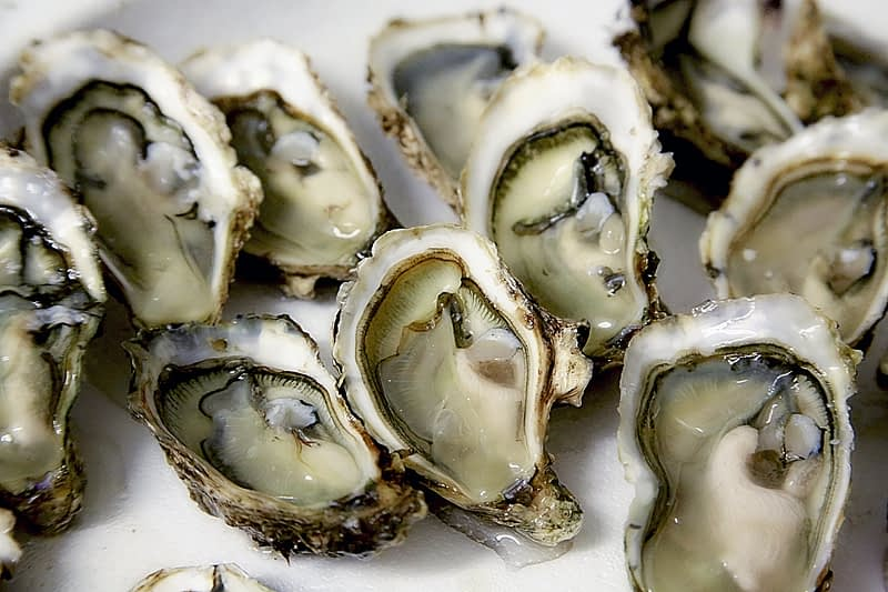 oysters half opened
