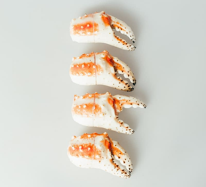 Russian King Crab Claw clap on